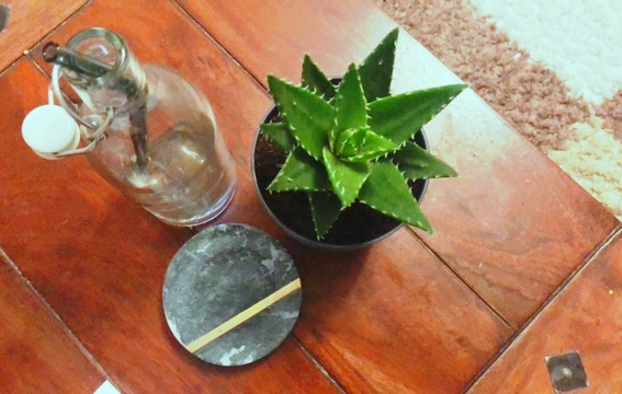 LIFE IN GERMANY – HOME DECOR – Green Shopping in OBI on ValentinesDay